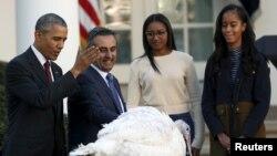 Tổng thống Mỹ Barack Obama thực hiện nghi thức 'phóng sanh gà tây' Abe tại Tòa Bạch Ốc ngày 25/11/2015.