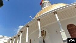 La Asamblea Nacional de Venezuela aprobó en primera instancia la ley órganica de referendos.