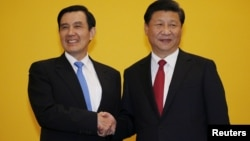 시진핑 중국 국가주석(오른쪽)과 마잉주 대만 총통이 7일 싱가포르 샹그릴라호텔에서 정상회담에 앞서 악수하고 있다.
