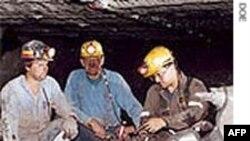 Trung Quốc, Anh, Úc ký thỏa thuận khai thác hầm mỏ