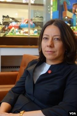 Turkey's chief of international relations, Ayse Sozen Usluer (D. Jones/VOA)