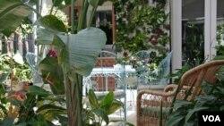 El invernadero de Ruth Kassinger se ha convertido en el sitio de reunión de su familia.