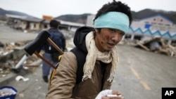 An injured survivor searches for food at a destroyed supermarket in the devastated residential area of Otsuchi, Japan, March 15, 2011.