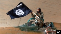 FILE - Undated photo shows fighter of the Islamic State group waving flag from inside captured government fighter jet following battle for Tabqa air base, Raqqa, Syria.