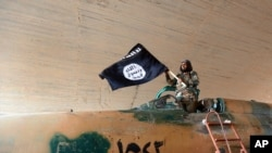 伊斯兰国8月27日公布的一张照片上一名战士挥舞着该组织的旗帜