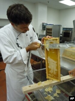 Executive sous chef Ian Bens scrapes a thin layer of wax off the bee frame before the honey is extracted.