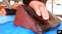 FILE - A fishmonger cuts a joint of Bluefin tuna, which was caught off Thailand, at a stall at the Nice fish market, southeastern France.