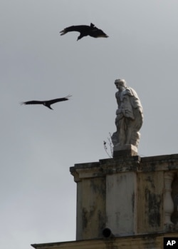 Vultures fly over Brazil's National Museum days after a fire tore through the structure in Rio de Janeiro, Sept. 5, 2018.
