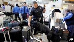 9/11 کے بعد سکیورٹی سے متعلق عمومی شعور میں تبدیلی