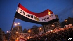 دیدار کمرون ومامور ایالات متحده ازمصر