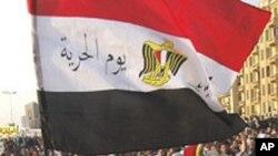 埃及抗议者