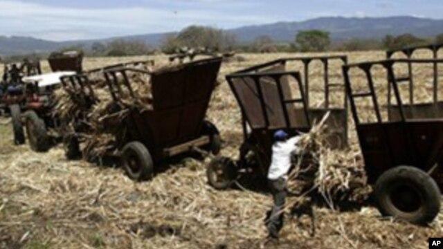 Los expertos del FMI también podrían evaluar el crecimiento económico de Nicaragua en 2015.