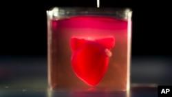 Une imprimante 3D imprime un cœur avec des tissus humains lors d'une présentation à l'Université de Tel Aviv en Israël, le 15 avril 2019.