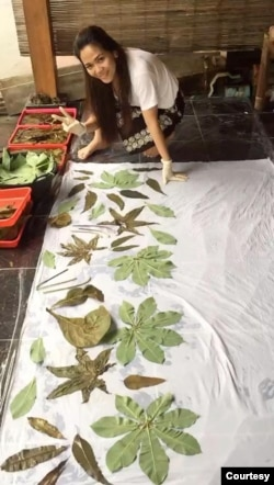 Linna Paendong sedang menerapkan dedaunan di atas kain. (Foto: Courtesy)