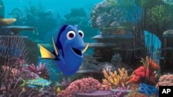 "This film image released by Disney Pixar shows the character Dory, voiced by Ellen DeGeneres. The character, first introduced in ""Finding Nemo,"" returns for the sequel, ""Finding Dory,"". (AP Photo/Disney Pixar)"
