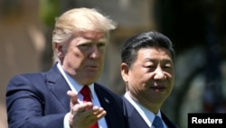 U.S. President Donald Trump and China's President Xi Jinping met at the Mar-a-Lago estate in Palm Beach, Florida.