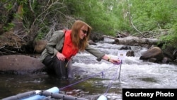A researcher measures the productivity of algae in a stream. (Brad Cardinale)