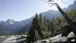 Йосемитский национальный парк в Калифорнии (архивное фото)