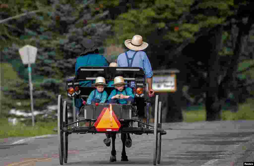 An Amish family travels by horse and buggy down a road in New Albion, New York.