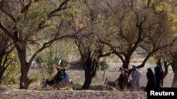 Uruzgon viloyati, Afg'oniston
