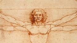 "Detail from the drawing ""Vitruvian Man"""