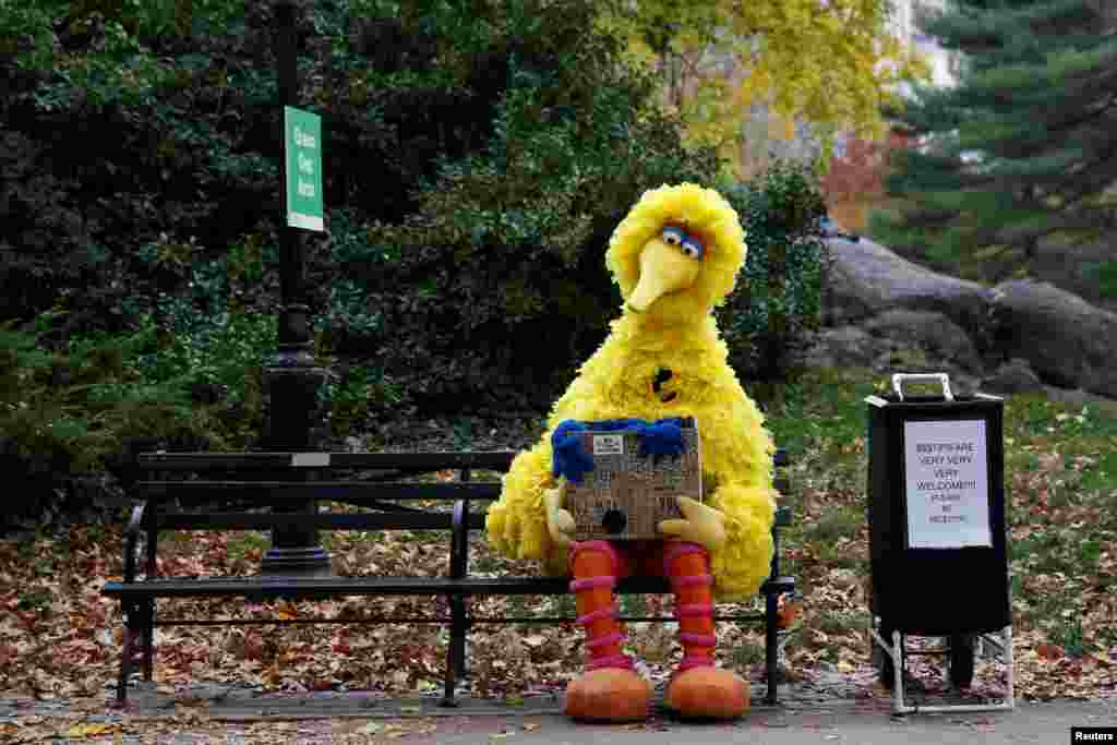 A man dressed as the Sesame Street character Big Bird sits on a bench waiting to take pictures with people walking through Central Park in New York, Nov. 14, 2016.