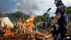 Ivory carvings and elephant tusks are lit on fire by firefighters for the first Cameroon ivory burn, attended by U.S. Ambassador to the United Nations Samantha Power at the Palais des Congres in Yaounde, Cameroon on April 19, 2016, to highlight the need to halt the Ivory trade in order to save Africa's elephants.
