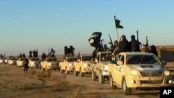 FILE - In this undated file photo released by a militant website, which has been verified and is consistent with other AP reporting, militants of the Islamic State group hold up their weapons and wave its flags on their vehicles in a convoy to Iraq, in Ra