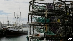 Crab pots are stacked along a pier at Fisherman's Wharf in San Francisco, Nov. 5, 2015.