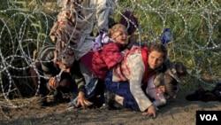 پس از سرازیر شدن میلیون ها پناهجو به اروپا، ایالات متحده در جستجوی برداشتن گام ها جهت رسیدگی به این بحران میباشد