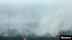 Asap membubung dari hutan yang terbakar dan menyebabkan kabut asap di Riau. (Foto: Dok)