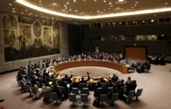 Report on UN Security Council Transformation Filed By Sithandekile Mhlanga