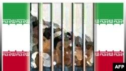 سازمان گزارشگران بدون مرز از دستگیری سه روزنامه نگار دیگر در ایران خبر می دهد