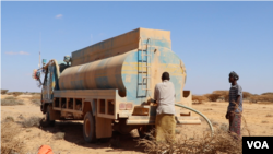 FILE - FAO trucks deliver drinking water to thirsty livestock, in the Puntland desert, Somalia, March 2017. (N. Wadekar/VOA)