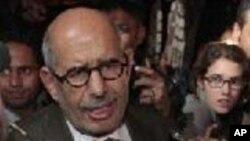 埃及著名的民主鬥士巴拉迪(資料圖片)