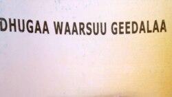 'Dhugaa Waarsuu Geedalaa' kitaaba dansooma,qaroomaa,jabeenna,tokkummaa aadaa fi seenaan qabdu keessatti barreessan