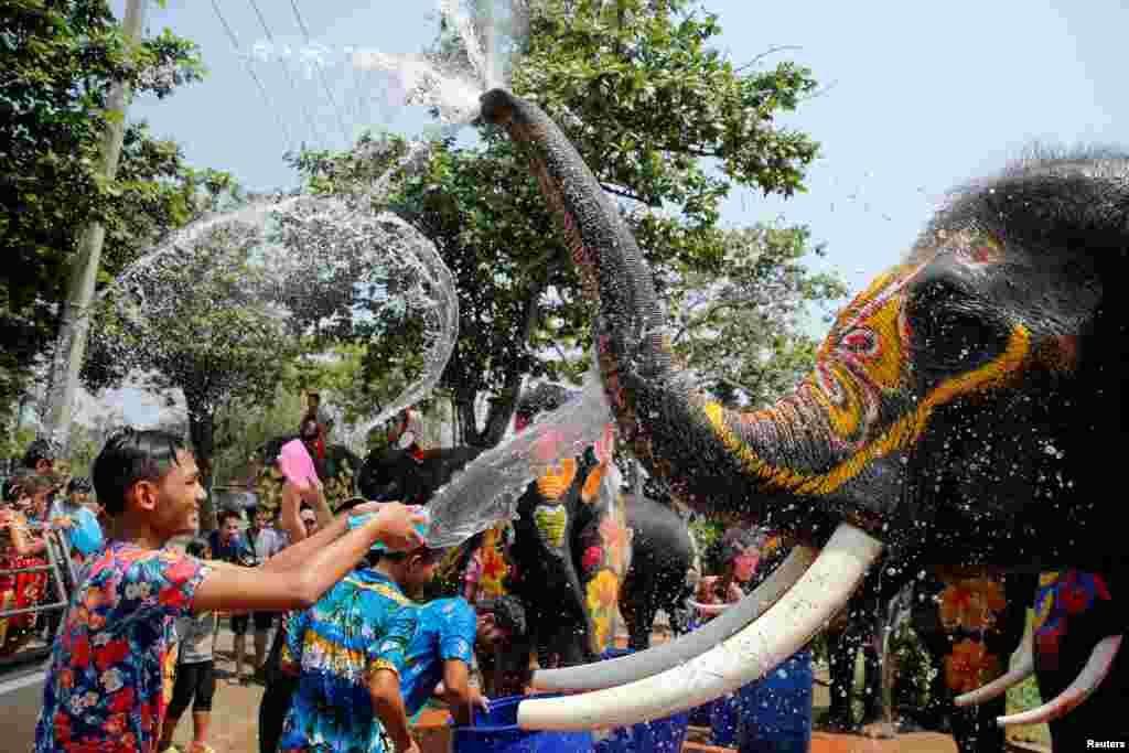 A boy and an elephant splash each other with water during the celebration of the Songkran water festival in Thailand's Ayutthaya province, north of Bangkok.