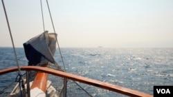 Las autoridades de inmigración y aduanas abordaron el crucero para concretar las detenciiones.
