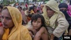 ভারতের জম্মু পুলিশ শত শত রোহিঙ্গাকে আটক অভিযান শুরু করেছে