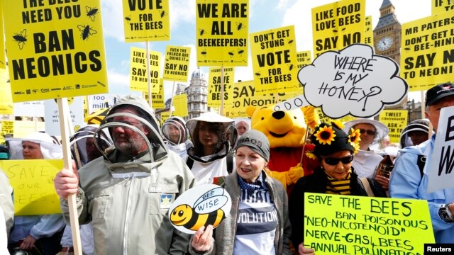 Designer Vivienne Westwood (C), and a person in a Winnie The Pooh costume join campaigners protesting in Parliament Square to urge Britain's government to ban the use of pesticides containing neonicotinoids, in central London, April 26, 2013.