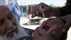 A New Deadly Kind of Polio