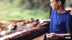 Khu bảo tồn hươu ở Nairobi, giá vào cửa khoảng 15 đô la cho người nước ngoài. (Hình: Hùng Nguyễn)