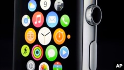 Apple CEO Tim Cook introduces the new Apple Watch in Cupertino, Calif., Sept. 9, 2014.