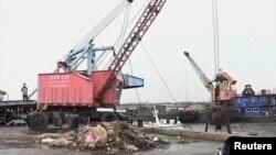 黄浦江中打捞上的死猪已近六千头(视频截图)