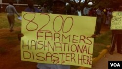 The farmers carried placards denouncing the people who allegedly swindled them large sums of money in the agricultural inputs scheme. (Photo By Thomas Chiripasi)