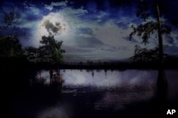 This is more like it: French Lake in Concordia Parish. All you need is a hoot owl to give you the eerie feeling of a Louisiana swamp at night.