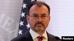 Mexican Foreign Minister Luis Videgaray will travel to Jamaica and other Caribbean nations in March, as part of efforts to erode Venezuela's oil-based influence in the Caribbean.