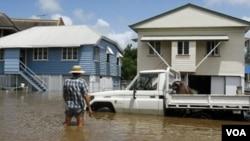 Seorang warga memandangi mobil yang terjebak banjir di pinggiran kota Brisbane, Rabu, 12 Januari 2011.