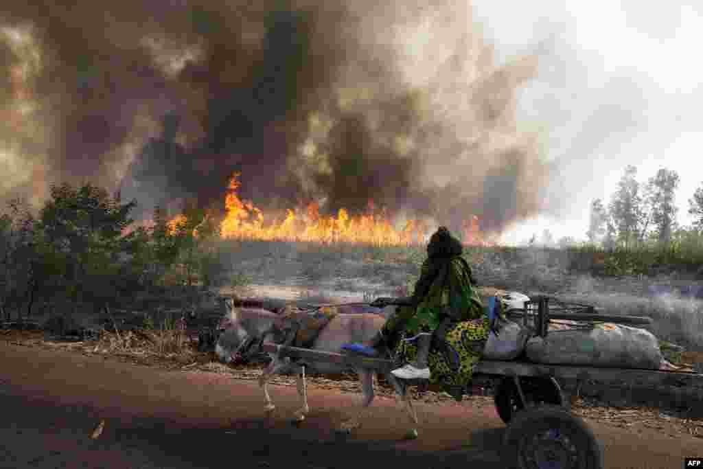 Đám cháy trên con đường có đoàn xe quân sự của Pháp và Mali đi qua, trong lúc họ đến giải cứu thành phố Diabaly bị phe Hồi giáo cực đoan chiếm. (AFP)