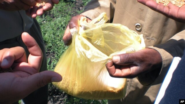 Cameroonian officials say proliferating plastic bags, ironically called 'African flowers',  are becoming an environmental nuisance (AP)..
